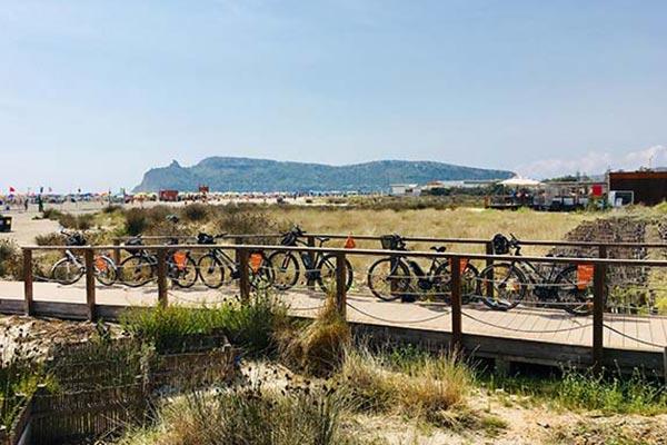 FR - Scopri Cagliari Tours 05 Flamant roses et plage du Poetto