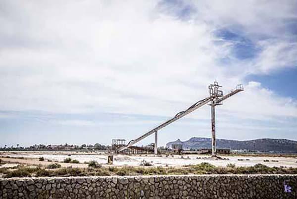 FR - Scopri Cagliari Tours 12 Flamant roses et plage du Poetto