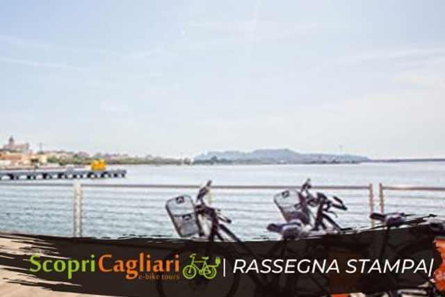 Tour dei fenicotteri Scopri Cagliari